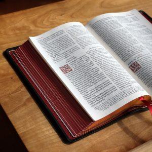 Man's Plots and God's Providence